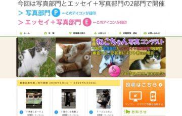 第3回 ねこちゃん写真コンテスト 賞品 ギフト券1万円分