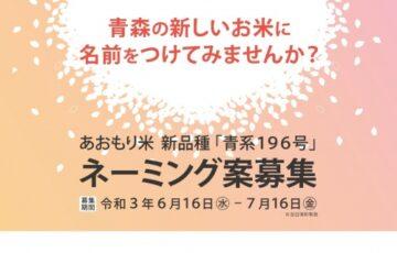青森米 新品種「青系196号」ネーミング案募集[賞金20万円 青系196号60kg]